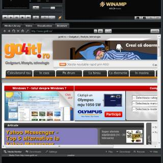 browser web winamp
