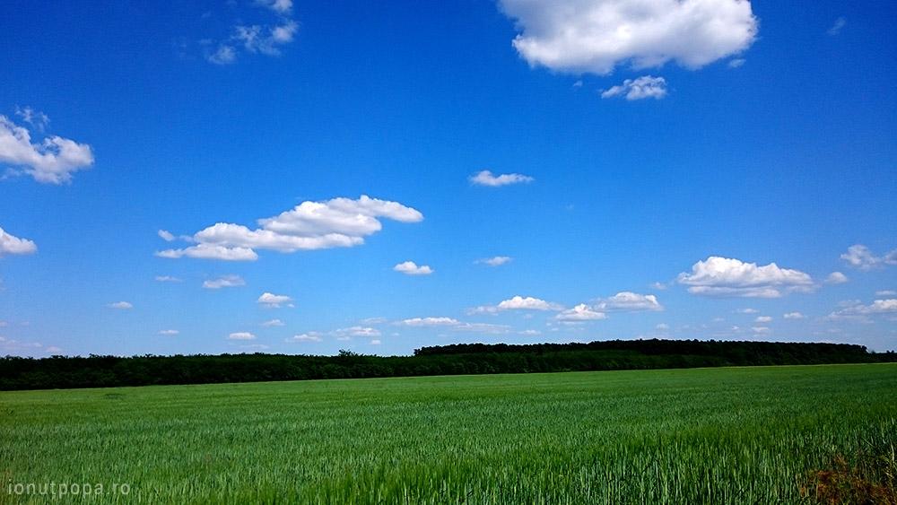 Traseu cu bicicleta langa Parcul Natural Comana - Aici m-am simtit ca in Windows XP