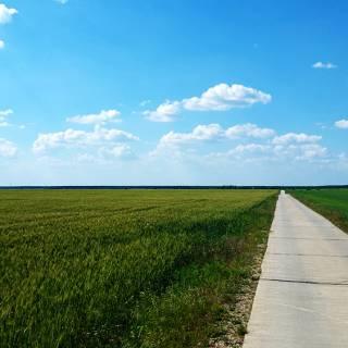 Traseu cu bicicleta langa Parcul Natural Comana - Drumul spre Vlad Tepes